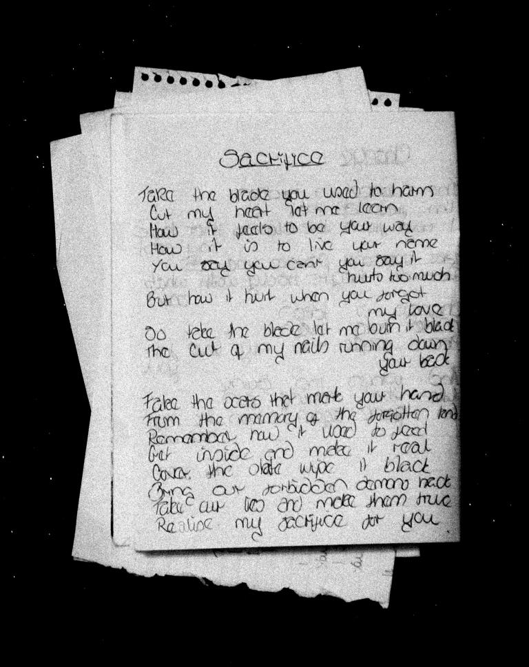 Sacrifice Diary
